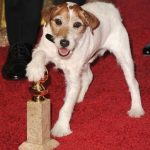 uggie_the_artist
